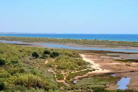 Overzichtsfoto zoutmoeras Ria Formosa